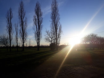 Vue sur la campagne - La Morinière