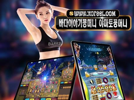 www.xoreel.com 릴게임 바다이야기 야마토게임 릴게임사이트