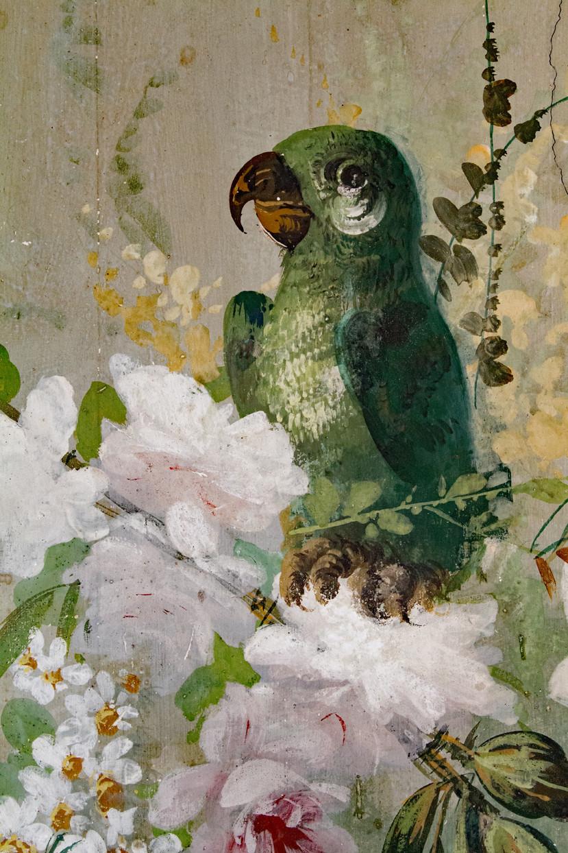 Parrot Dimora Del Prete Belmonte