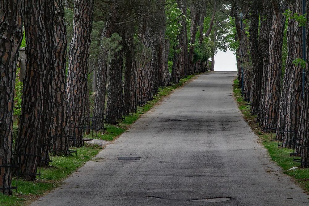 Viale delle Rimembranza Castello Monforte