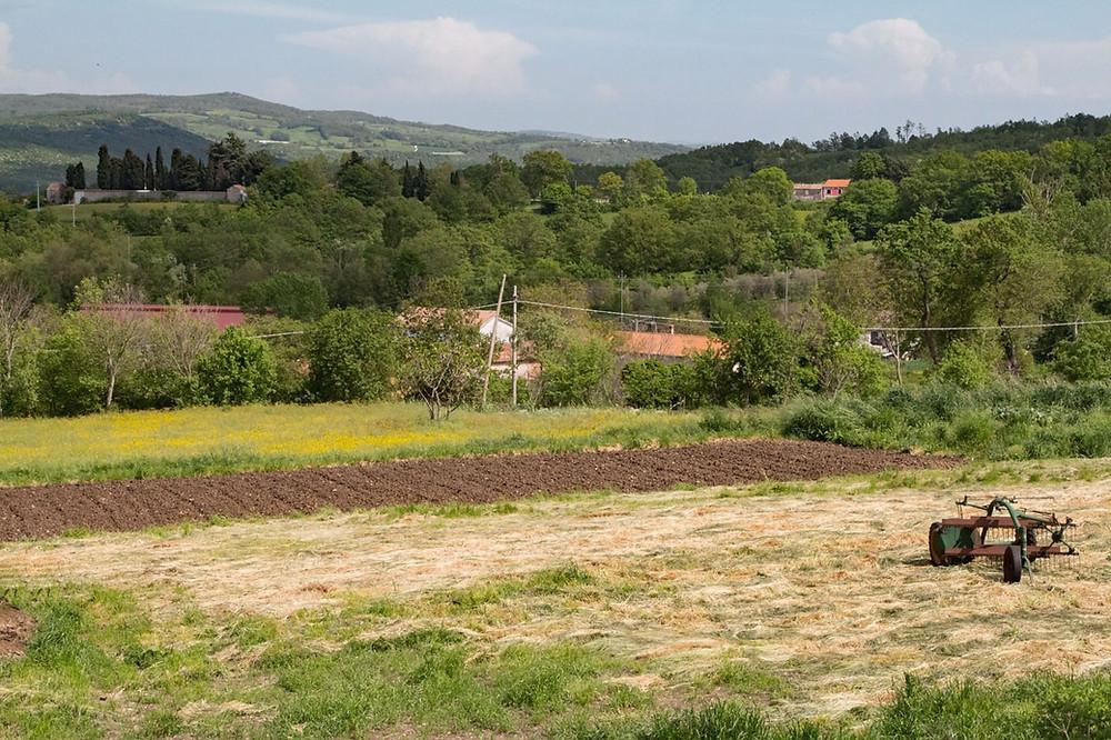 Farmland Sepino Molise