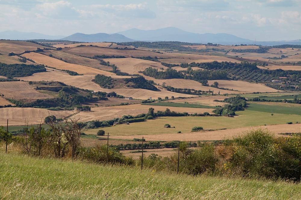 Tuscia hills Tarquinia Lazio