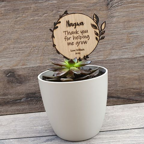 Personalised Planter Sticks