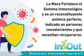 Tu Sistema Inmunológico