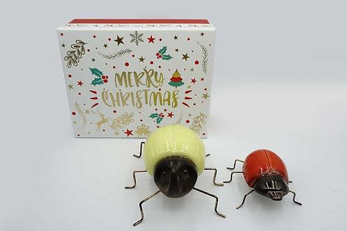 Fake Beetles Gift Box