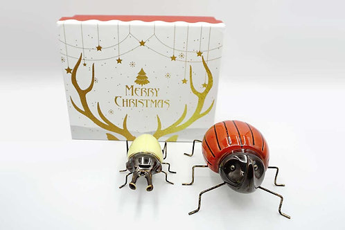 Fake Beetles Gift Box (Yellow Stay Beetle)