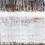 Thumbnail: No. 19-13  (Giclée on canvas print)