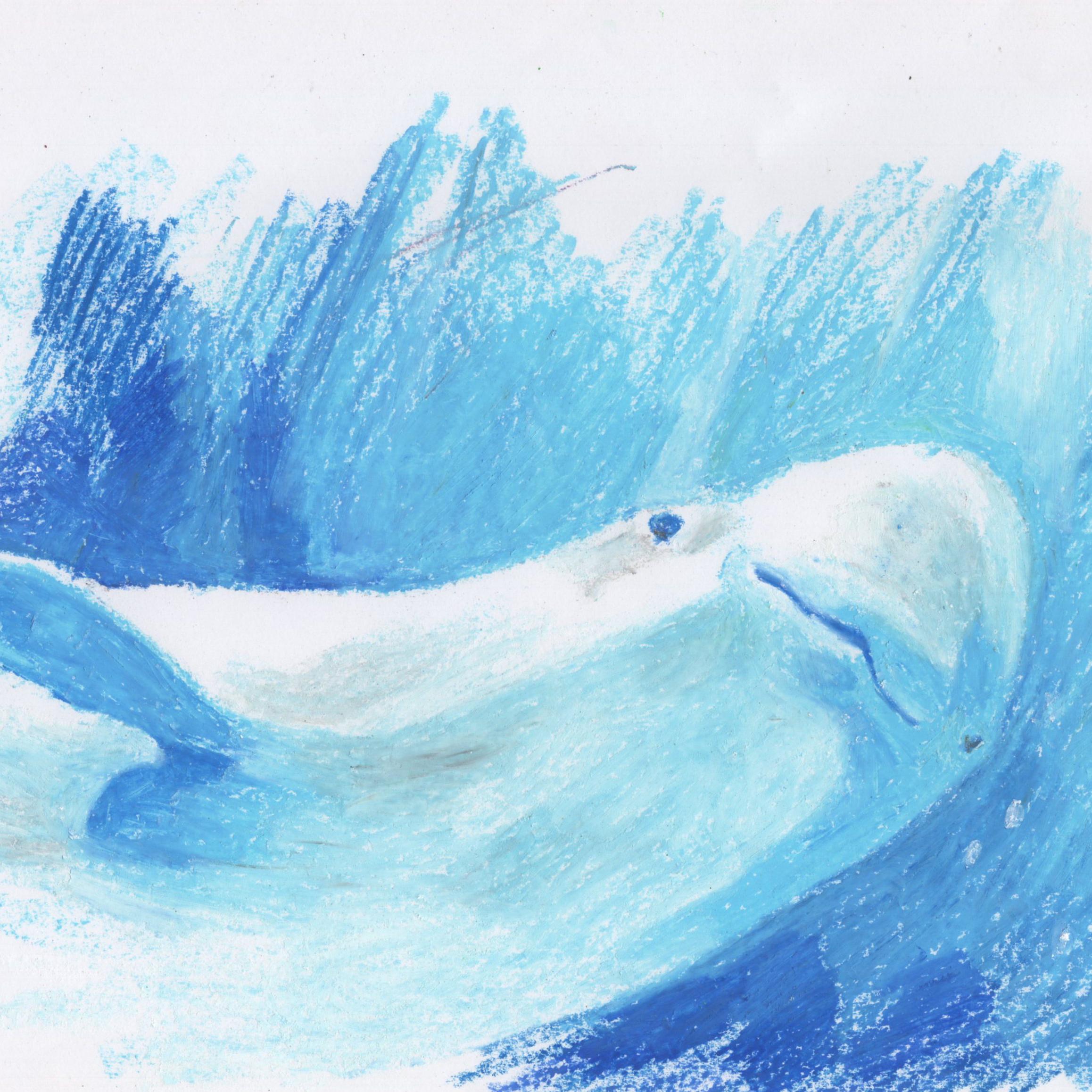 Yangtze finless porpoise