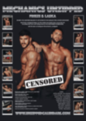 Back Cover_Mechanics_Censored.jpg