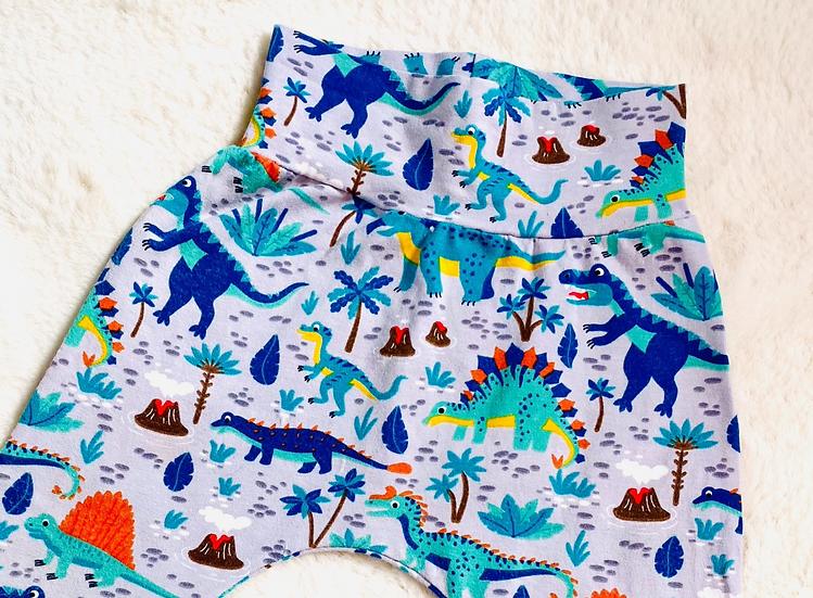 Dinosaur Print Shorts