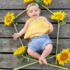 Brigden Sunflowers-25.jpg