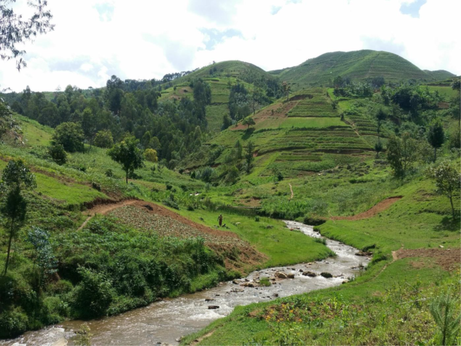 Nyirahindwe - The Nyirahindwe river