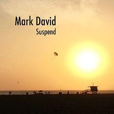 MarkDavidSuspend.jpg