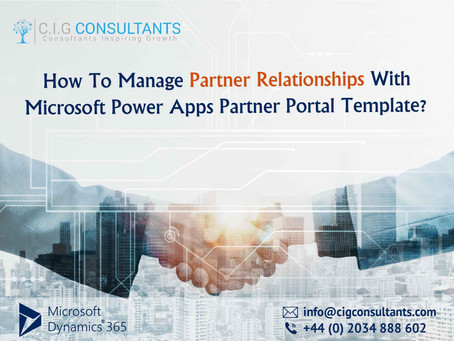 How To Manage Partner Relationships With Microsoft Power Apps Partner Portal Template?