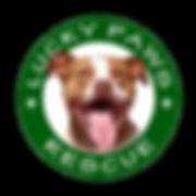 lp_logo_sm.png