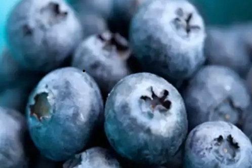 Blueberry Pie (Gluten Free)