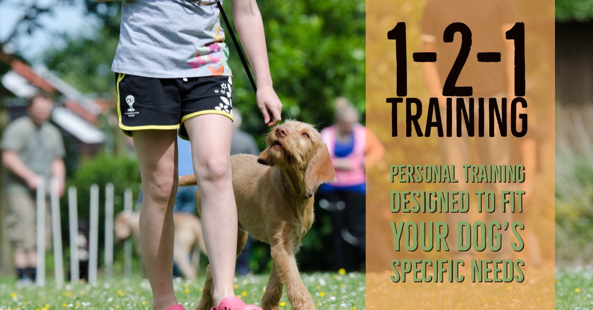 121 Training Packages
