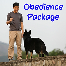 Obedience Package.png