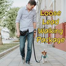 Lead Walking Package.png