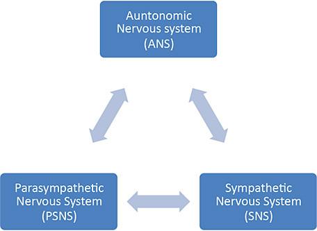 Reducing Allostatic Load & Stress Through Heightened Awareness
