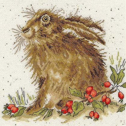 Hippy Hare