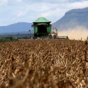 LIBERAÇÃO DE AGROTÓXICOS PODE PROVOCAR BOICOTE A PRODUTOS E PREJUDICAR EXPORTAÇÕES
