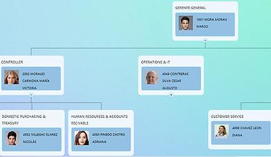 Generación de organigrama jeráquico, puestos y plazas, descripción de puestos, tabuladores de sueldos