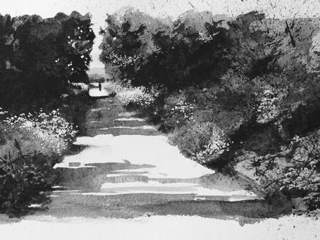 Tarka Trail near Braunton.