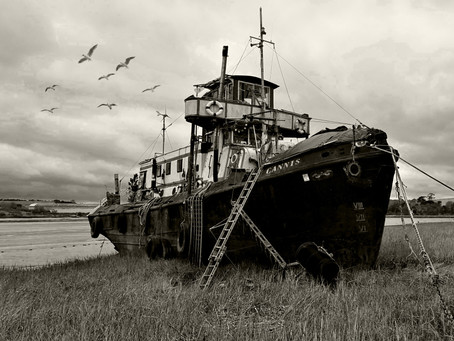 The Cannis Aground.