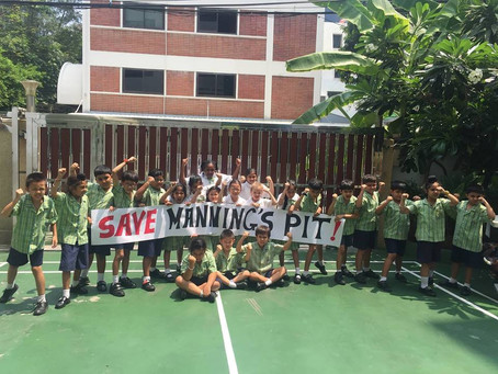 Please Save Manning's Pit!