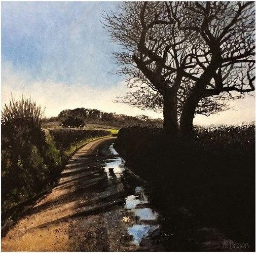 Winter Lane Bishop's Tawton.