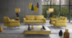 Aer_-_Salon_modèle_Yellow_cuir,_tissu.jp