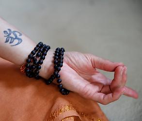 Hand Mudra Pure Yoga Pragyadhara
