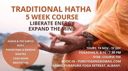 Pure Yoga Hatha Intermediate level Cours