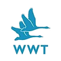 wildfowl-and-wetlands-trust-squarelogo-1
