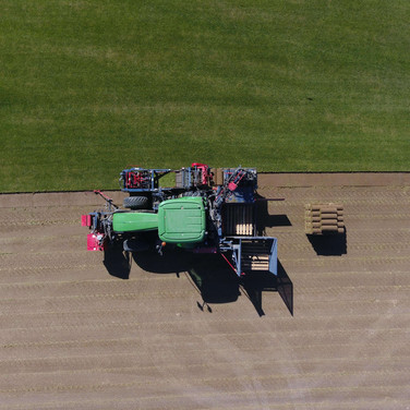 Harvesting the sod