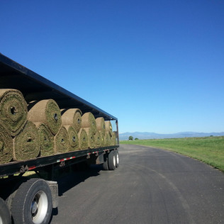 Big Rolls of Sod on the Truck