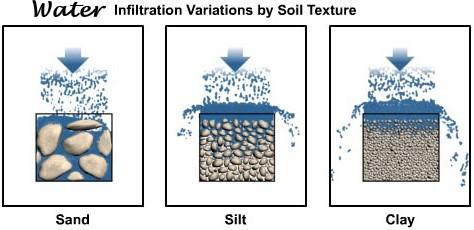 Soil Formation.