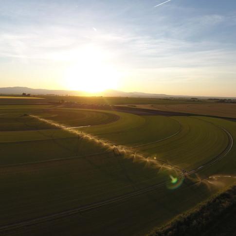 Our Sod Farm in Wheatland, Wyoming