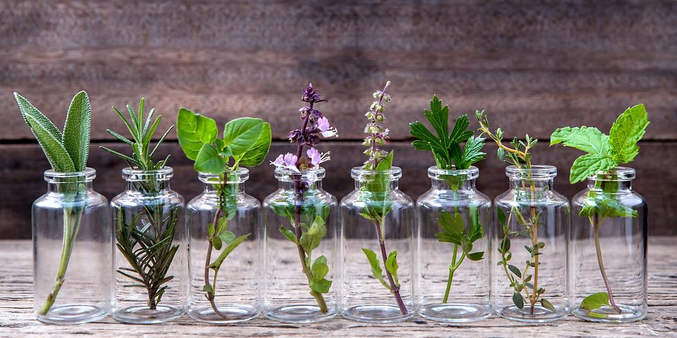 Balade Huiles Essentielles - Aromathérapie débutant