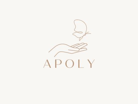 Mon article sur le blog Apoly
