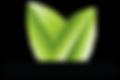 BayRoadMedia-Logo.png
