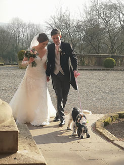 dogs at weddings lancashire.jpg