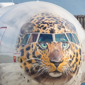 (PHOTO, VIDEO) Special aircraft liveries