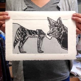 US/MX Coyote Relief Print