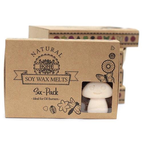 Box of 6 Wax Melts - Vanilla Nutmeg