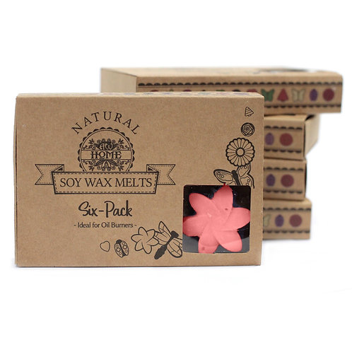 Box of 6  Wax Melts -  Japanese Magnolia