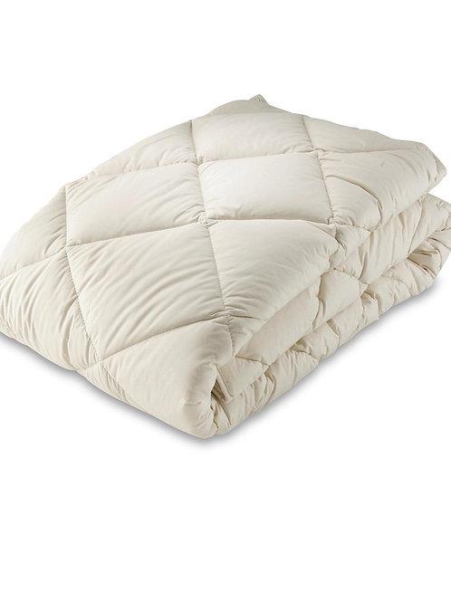 Organic Cotton/Kapok All Year Duvet