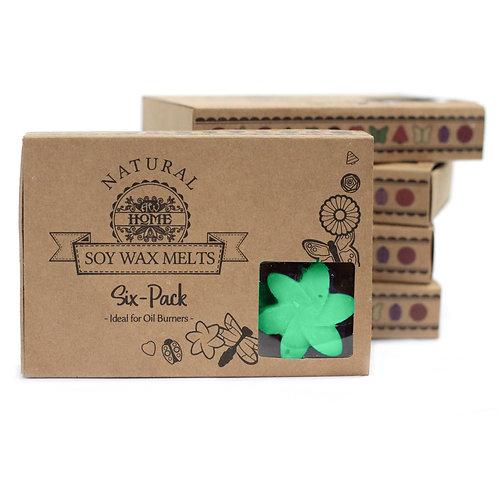 Box of 6  Wax Melts - Hidden Garden