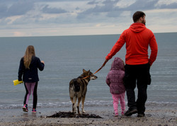 Bones at the Irish Sea